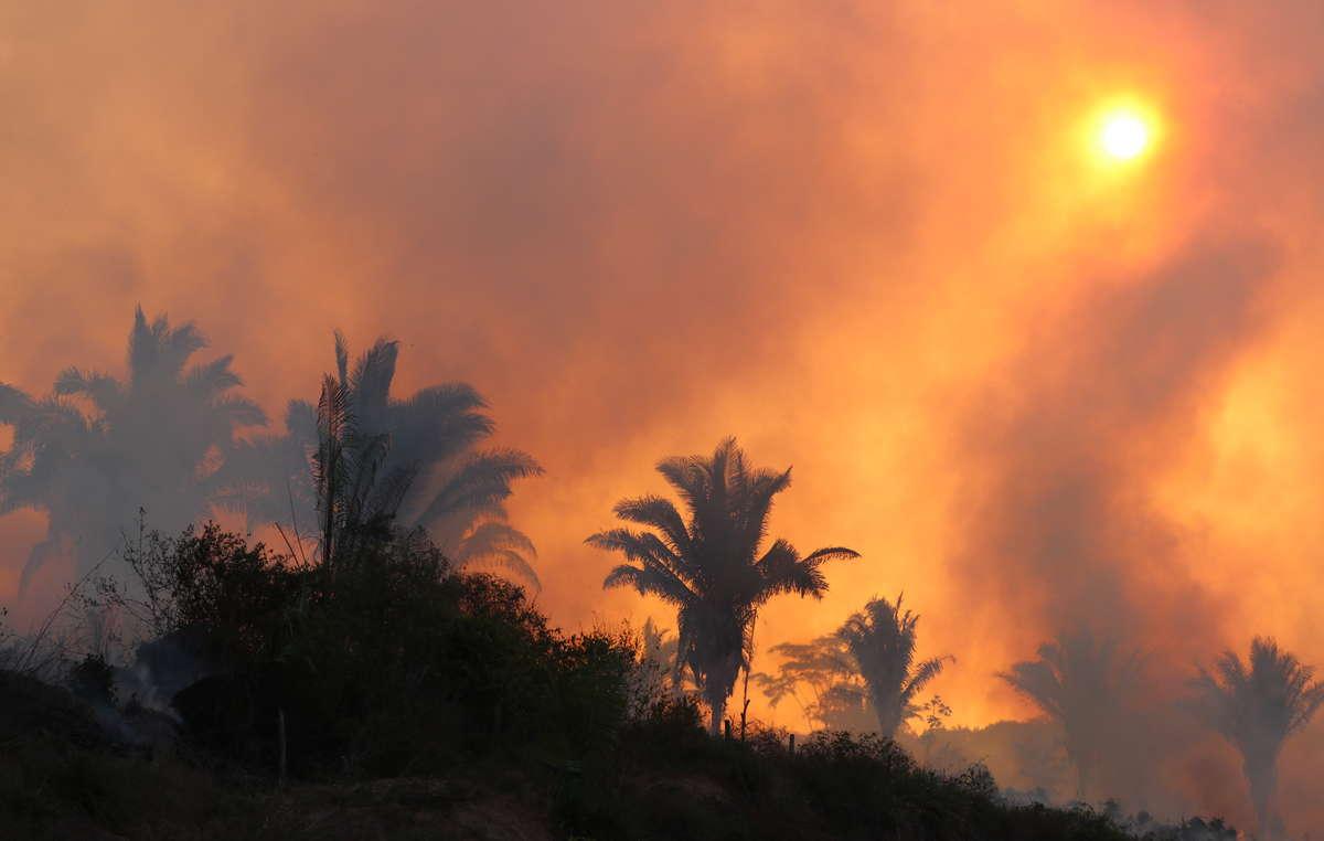 Une scène des incendies catastrophiques en Amazonie en 2019. Lorsque les services dincendie ont collaboré avec les peuples locaux dans la savane brésilienne, le nombre dincendies en saison sèche a diminué de 57 %.