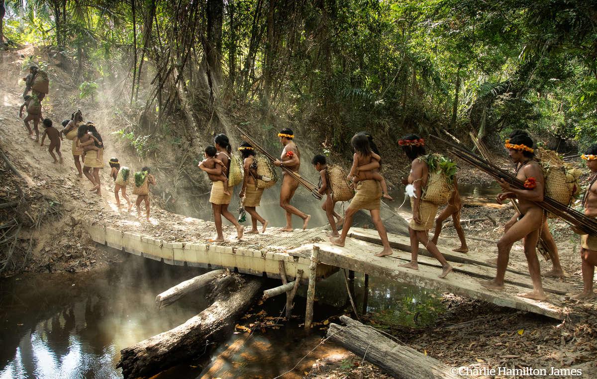 Awá people embark on a hunting trip