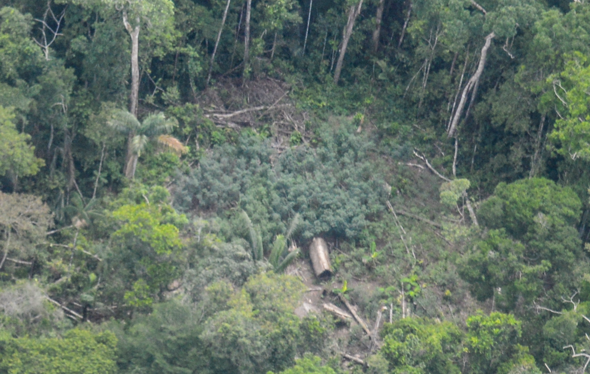These images of communal homes or malocas are the first to prove definitively the presence of uncontacted indigenous people in this area