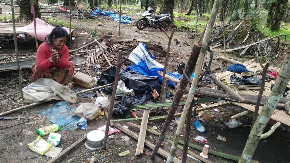 O povo Orang Rimba foi atacado e teve suas casas destruídas depois de lutar para encontrar comida durante a pandemia