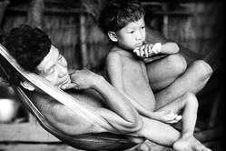 'Le progrès peut tuer' décrit les répercussions dévastatrices du développement forcé sur les peuples indigènes.