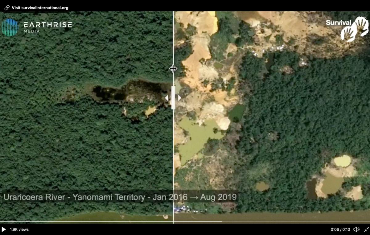 Standbild eines Videos, dass die Entwaldung im Yanomami-Gebiet Uraricoera zeigt. Fluss Uraricoera, Brasilien. Januar 2016 – August 2019.