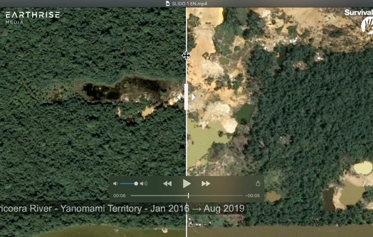 Still of video showing satellite images of deforestation in Yanomami territory, Uraricoera River, Brazil. Jan 2016 - Aug 2019.
