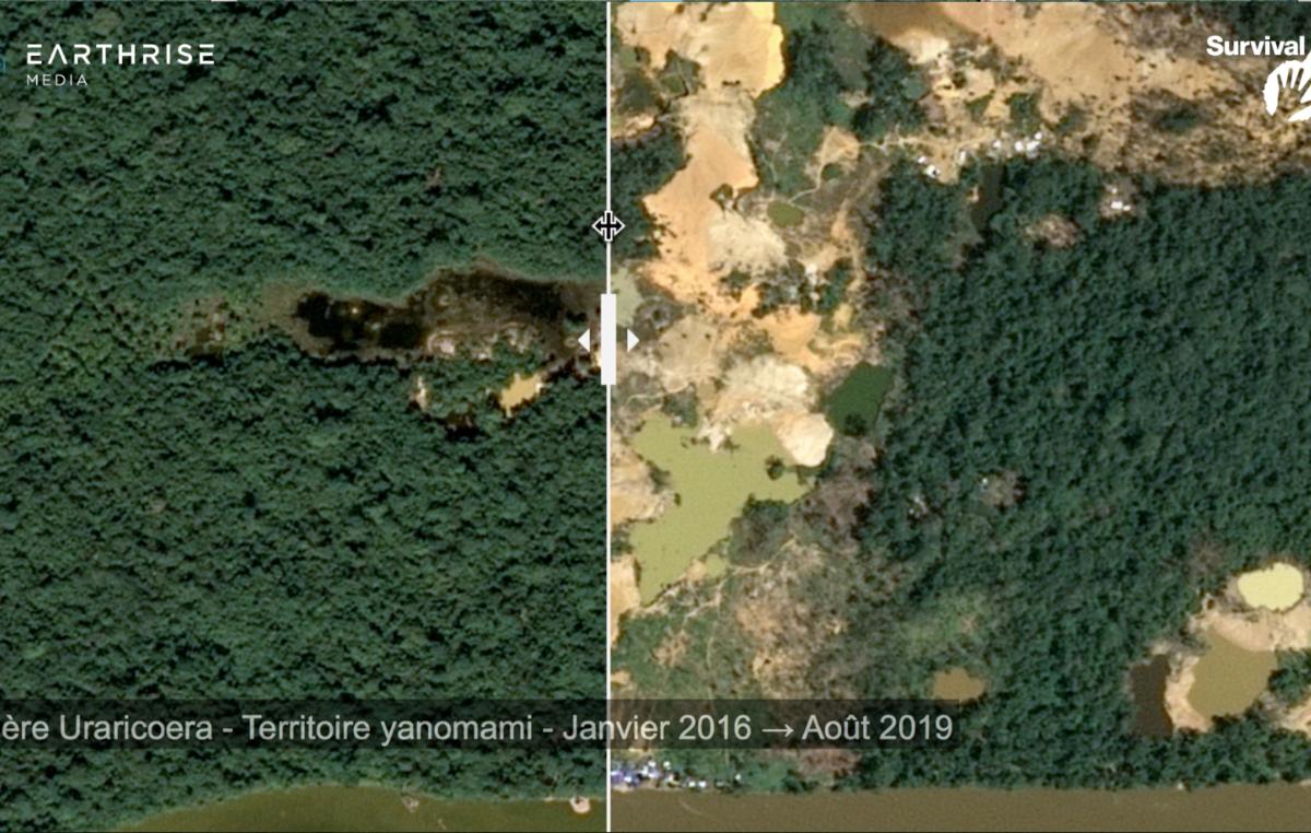 Photo d'une vidéo montrant des images satellites de la déforestation dans le territoire yanomami, rivière Uraricoera, Brésil (janvier 2016 - août 2019).