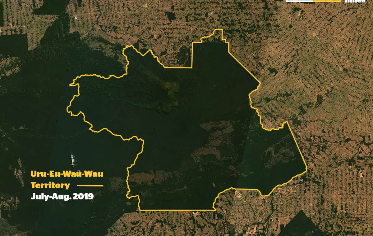 Satellite photo showing how the Uru Eu Wau Wau territory is an island of forest in a sea of destruction. The reserve itself is now being invaded by loggers and ranchers.