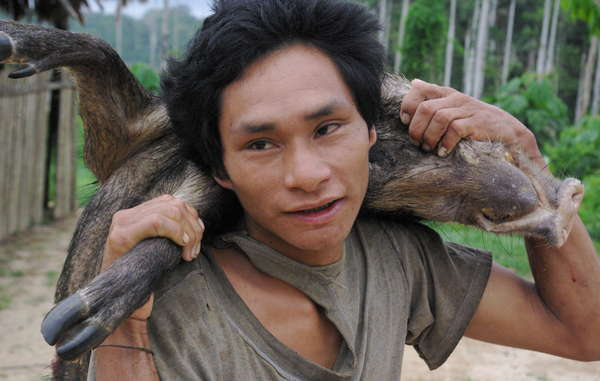 Un cacciatore Matsigenka rientra con un cinghiale.
