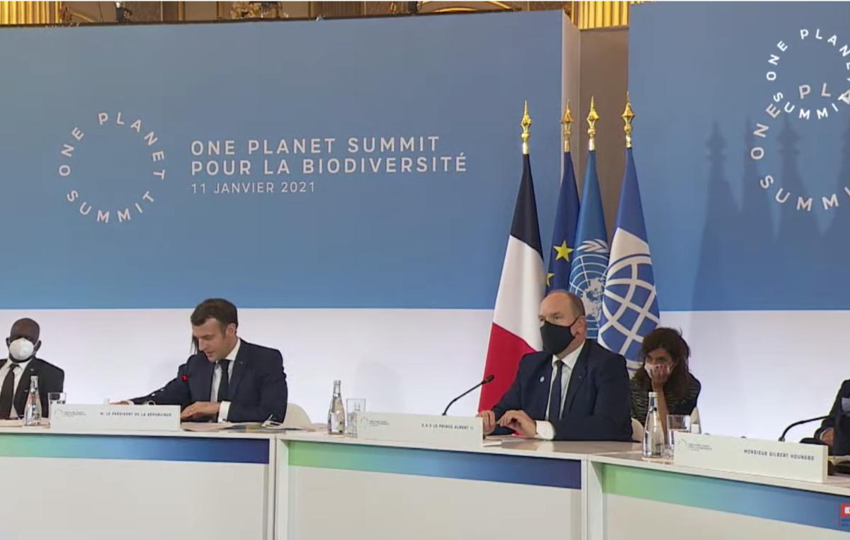 Emmanuel Macron interviene al One Planet Summit, che si è svolto l'11 gennaio 2021.