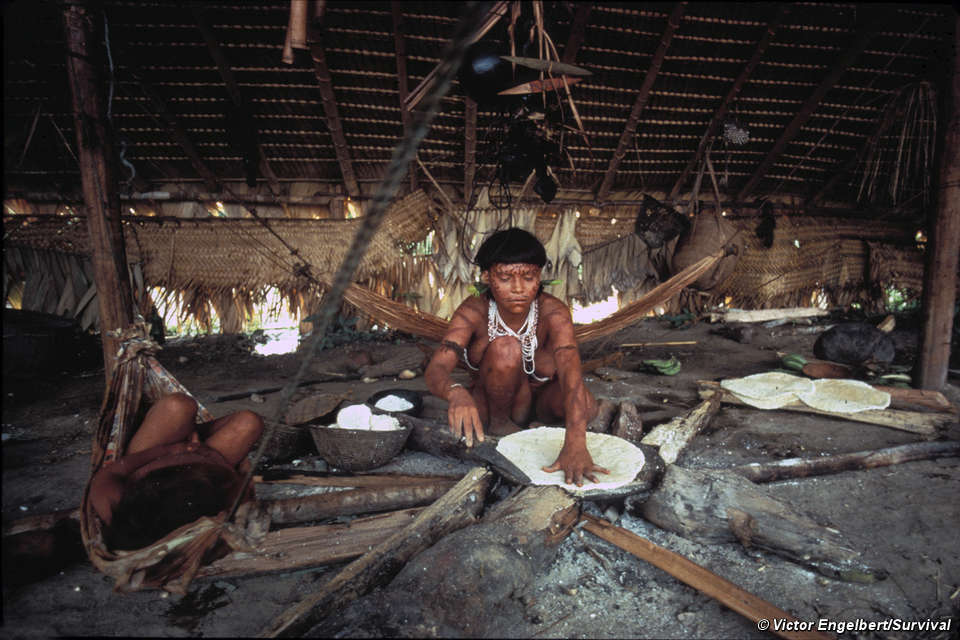Yanomami: Way of life - Survival International
