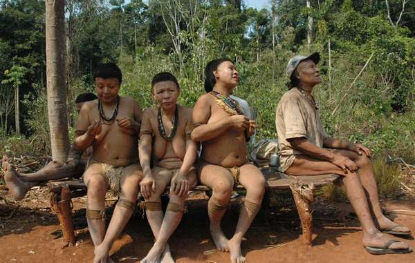 Sono sopravvissuti solo 5 Akuntsu. Quando moriranno, la tribù sarà estinta.