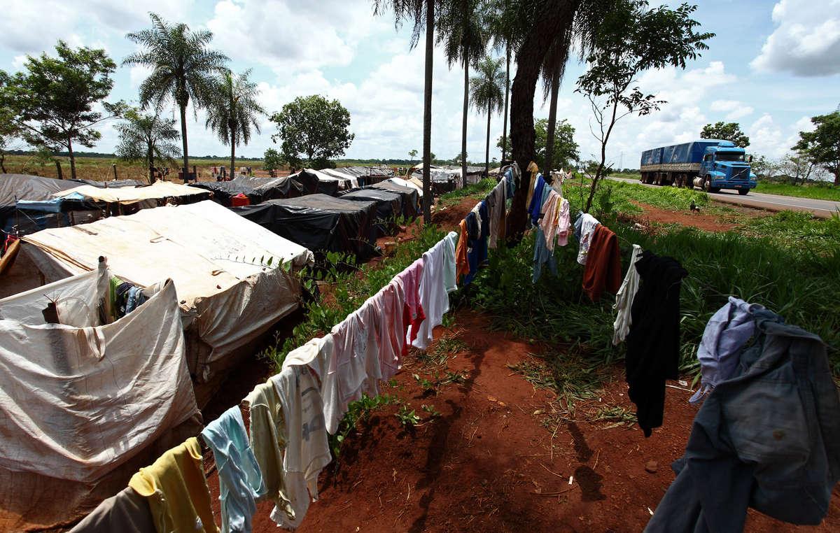 Le foreste dei Guarani sono state rubate e trasformate in allevamenti, campi di soia e piantagioni di canna da zucchero. Le comunità sono costrette a vivere (e morire) in squallidi accampamenti sul ciglio della strada.