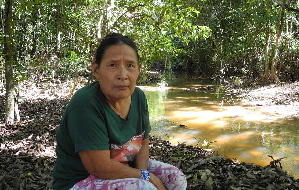 Rita Piripkura, l'unico membro della tribù a essere in contatto regolare con l'esterno, ha lanciato un appello urgente per la sopravvivenza dei suoi parenti incontattati.