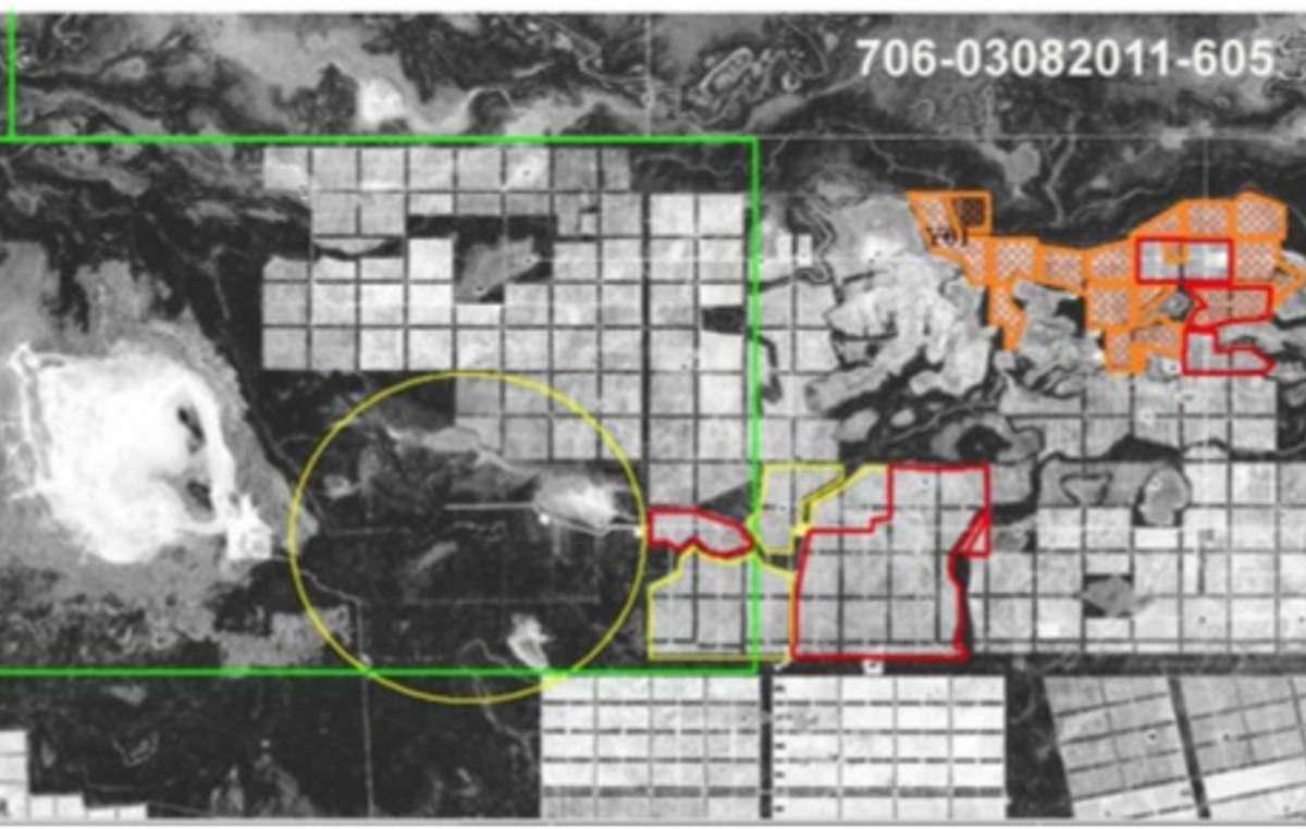 Grandes partes da floresta dos Ayoreo foram desmatadas pela BBC S.A. e a River Plate S.A
