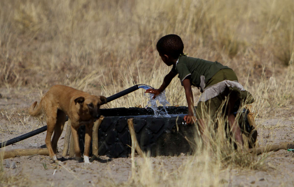 Leau coule enfin dans la Réserve du Kalahari.