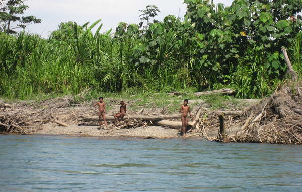 Uncontacted Mashco-Piro from south-east Peru, close to the Manú National Park.