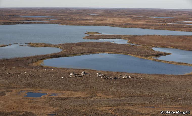 Nenets camp, Yamal Peninsula, Russia.