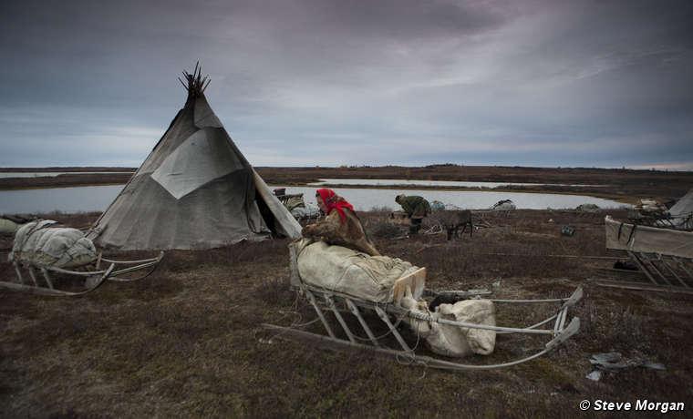 Pastores de renos nénets, península de Yamal.