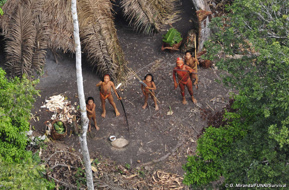 Brazilian Indians Survival International
