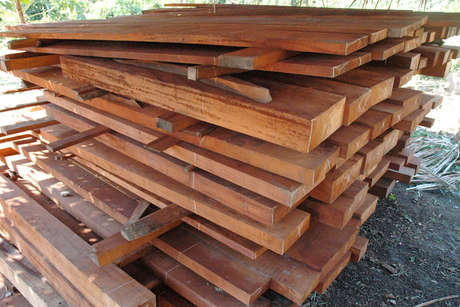 Peru logging dh 03 medium 460 landscape