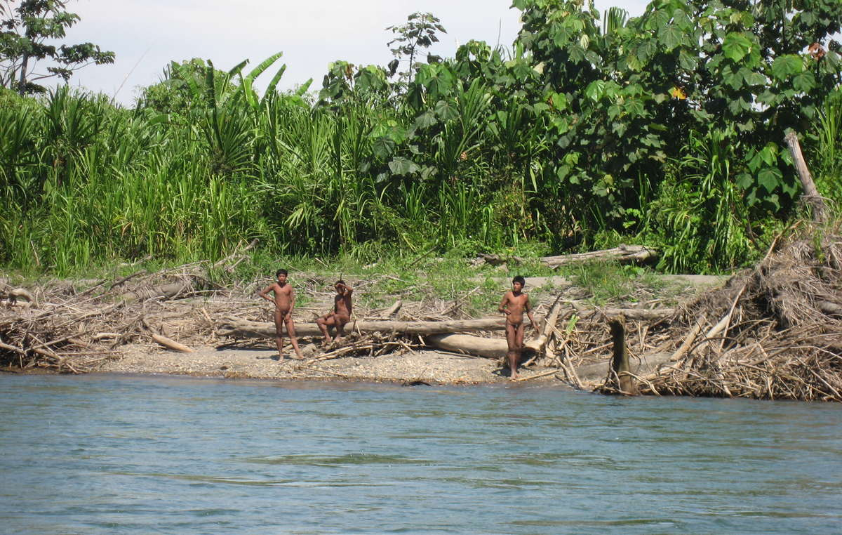 The Mashco-Piro are just one of up to 20 uncontacted tribes in Peru.