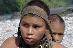 Uncontacted Indians' territory in Peru is being invaded by oil companies.
