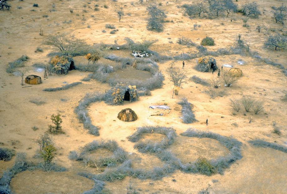 Maasai - Survival International