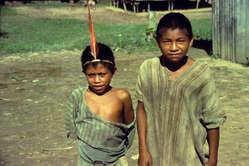 El pueblo indígena matsigenka ya ha sido golpeado por la gripe A
