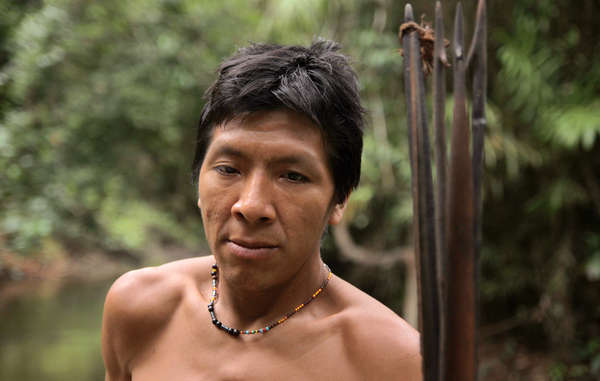 The Americas' leading human rights body has been called upon to save the Awá, Earth's most threatened tribe, from illegal invaders on their land.