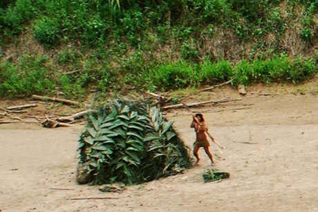Peru-mash-fenamad-02-crop-lr_460_landscape