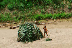 According to Daniel Saba, this photo proves nothing of the uncontacted tribes existence.