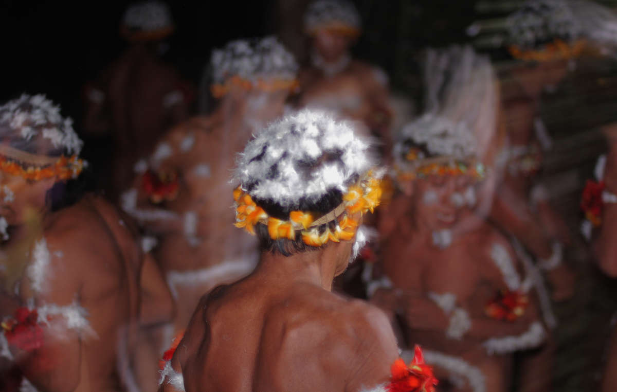 During the Awás full moon ritual, men decorate their hair with white king vulture feathers. The Awá are Earths most threatened tribe because their forest is being rapidly cut down.