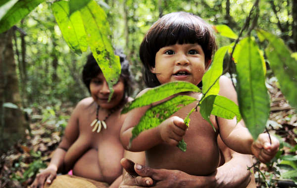 More than 48,000 people have urged Brazil's Justice Minister to save Earth's most threatened tribe.