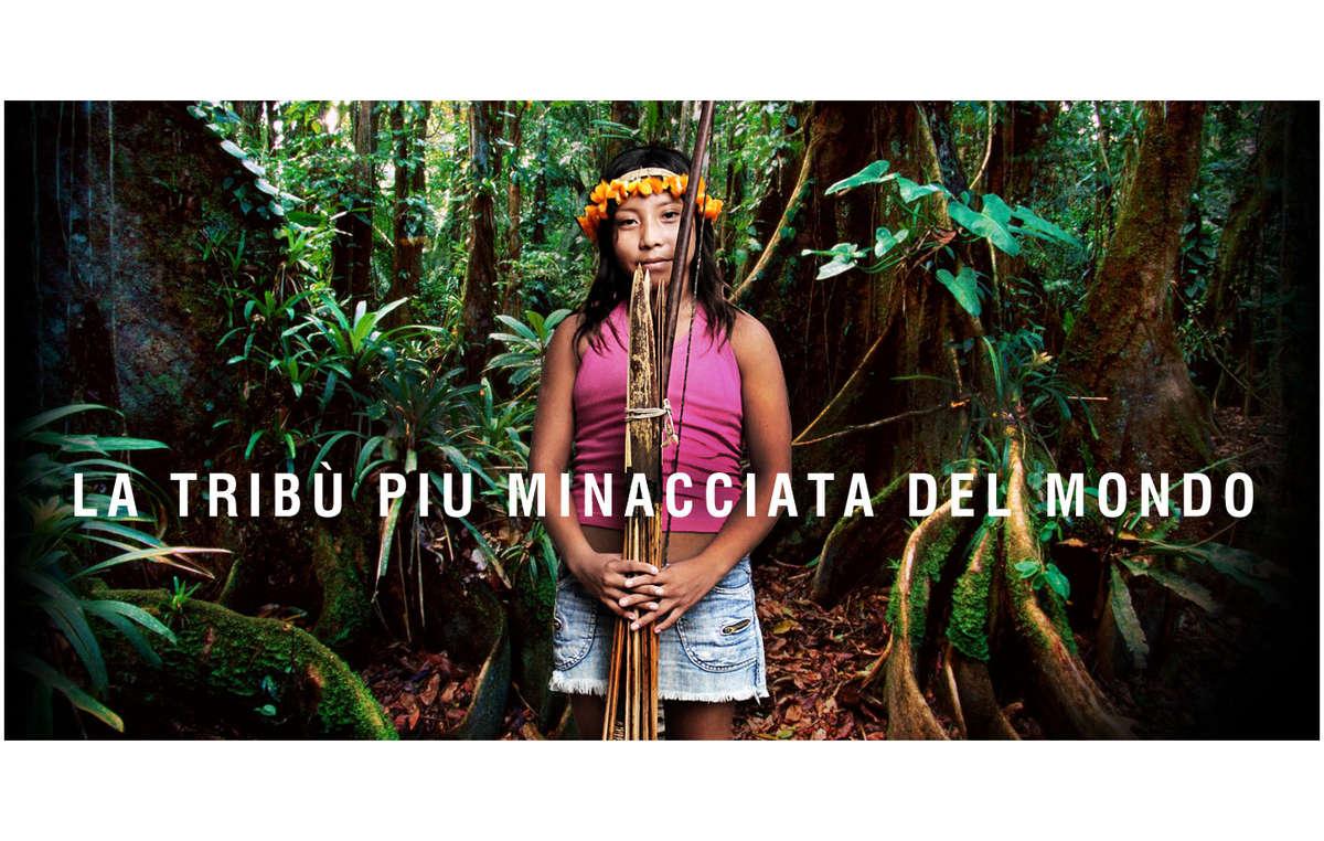 Il Brasile ha annunciato che tutti gli invasori illegali sono stati espulsi dal territorio awá: è un importante successo per la campagna per salvare la tribù più minacciata del mondo.