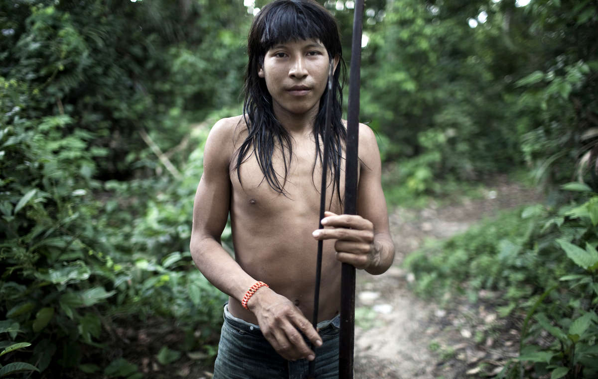 Illegal logging is stopping Earth's most threatened tribe from hunting.