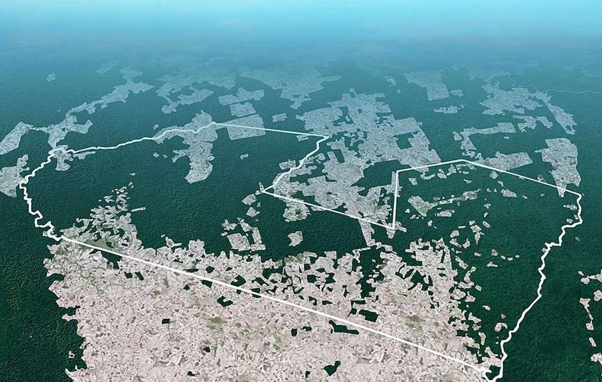 Este gráfico basado en imágenes captadas vía satélite muestra la extensión de la tala ilegal en un territorio awá.