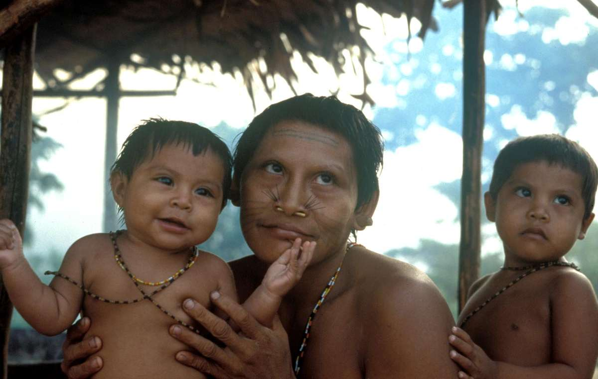 The Matís and other tribes of Brazils Javari Valley are speaking out against oil exploration around their forest.
