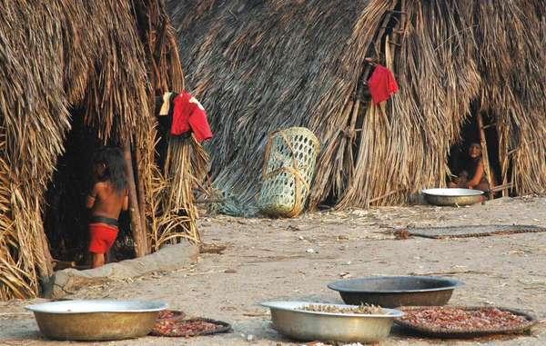 Malocas enawene nawe como éstas rodean el círculo central donde se celebran las ceremonias.