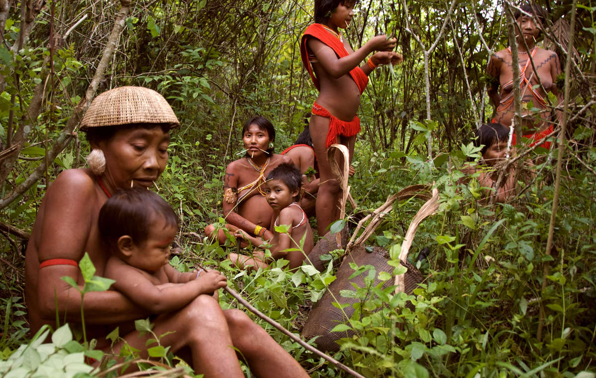 Yanomami women and children rest in a forest garden, Brazil. The Yanomami grow around 60 crops in these gardens, which account for 80% of their food supply.