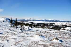 Los proyectos industriales de Canadá han destruido grandes extensiones de pastos vitales.