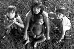 A group of Guarani children, Brazil. As a result of the loss and destruction of their ancestral lands, the Guarani face severe malnutrition as they are no longer able to hunt or fish, and barely have enough land to plant crops on.