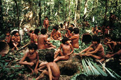 The creation of the Yanomami Park was one of Survival's greatest successes.