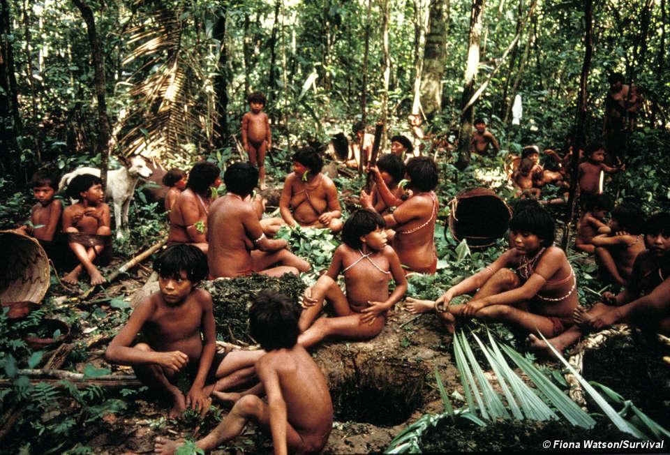 Resultado de imagen para tribu yanomami