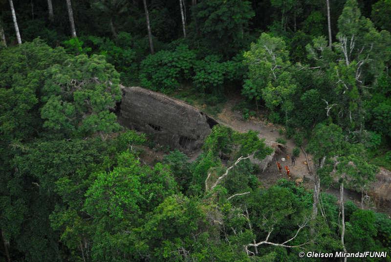 ... au cœur de la forêt amazonienne du brésil vivent des indiens