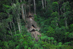 Uncontacted Indians seen from the air during a Brazilian government expedition over the Brazilian Amazon near the Peruvian border, May 2008.