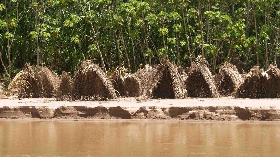 Les peuples non contactés profitent de nouvelles zones protégées, mais demeurent néanmoins menacés par les intérêts pétroliers et forestiers.