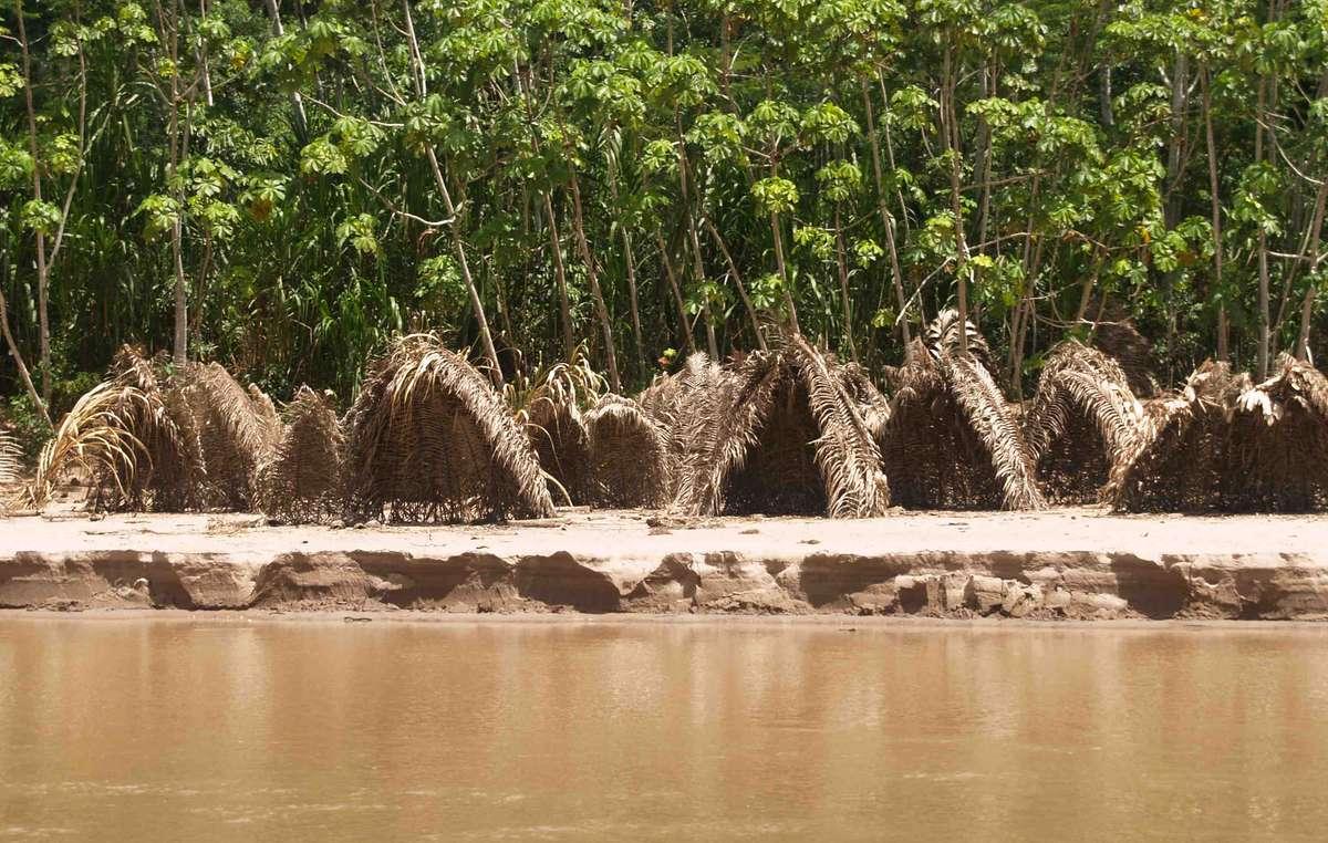 Depuis quelques temps, les Mashco Piro entrent de plus en plus souvent en contact avec des personnes extérieures. Les nouvelles réserves visent à assurer que les terres des peuples non contactés demeurent intactes.