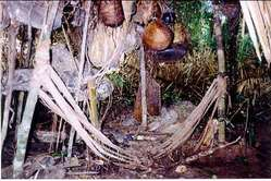 La casa di alcuni Indiani incontattati abbandonata frettolosamente, Rio Pardo, Brasile.