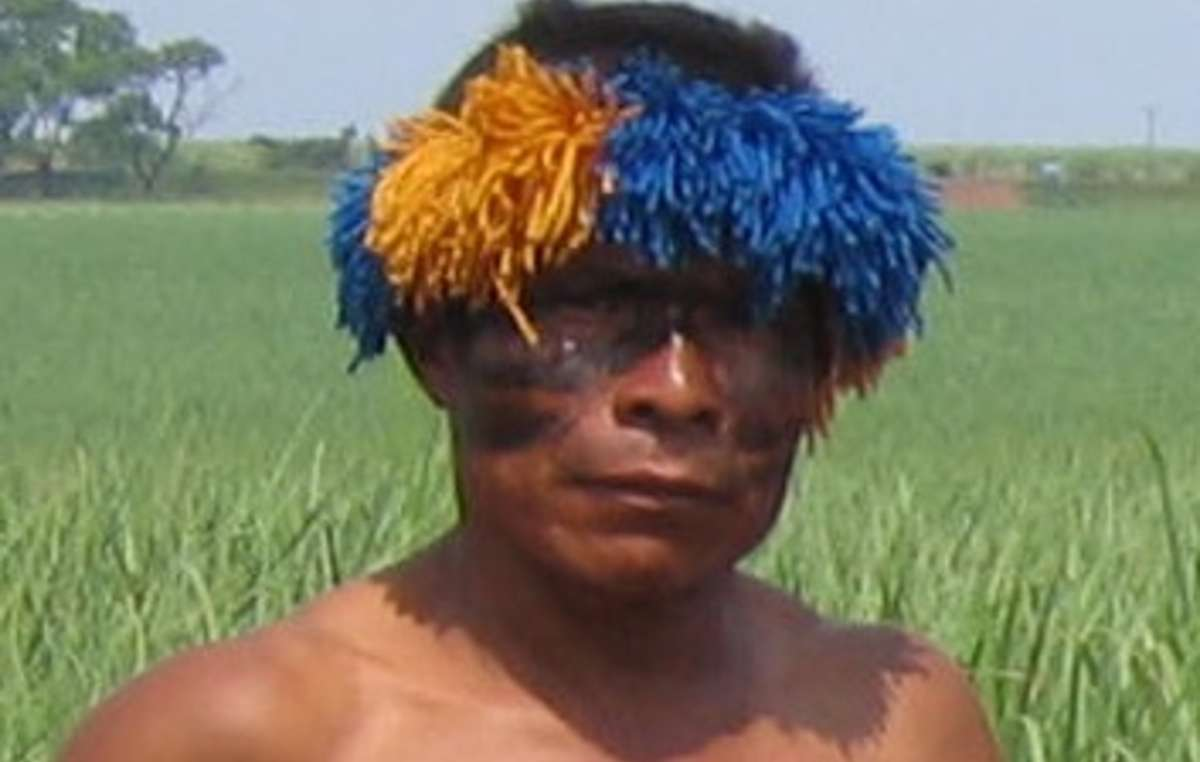 A Guarani man in front of sugar cane crops, grown where the tribe's forests once stood, Brazil.