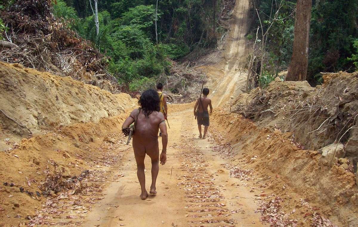 Awá-Männer gehen entlang einer Straße, die von Holzfällern geschlagen wurde