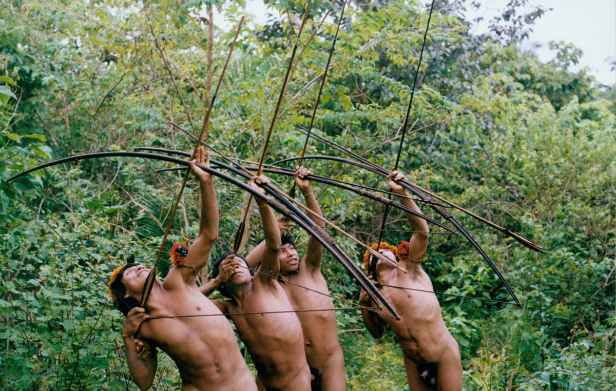 The Awá tribe is one of the world's few hunter-gatherer peoples. Their survival is now at risk.