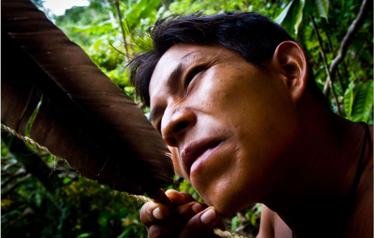 The abundant resources of their forest home provide the Matsés with a rich and varied diet.